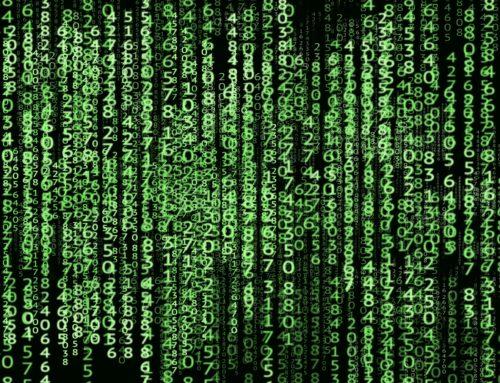 5% podatku dla programistów – IP BOX